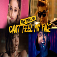 Cant Feel My Face The Megamix
