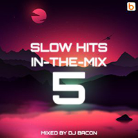 Slow Hits In The Mix 5