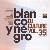 DJ Culture 35