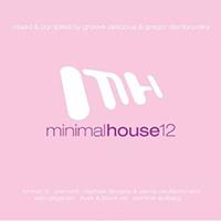 MinimalHouse 12