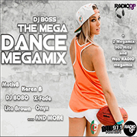 The Mega Dance Megamix
