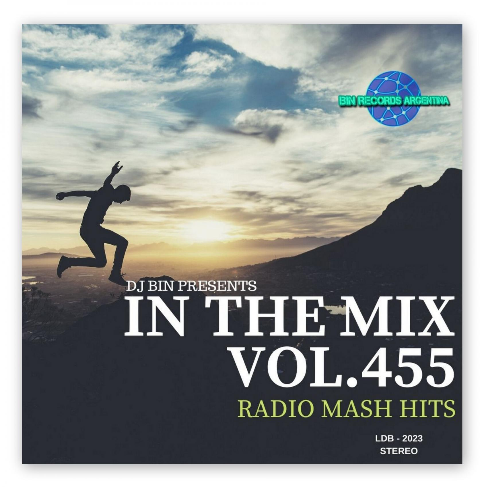 In The Mix 455
