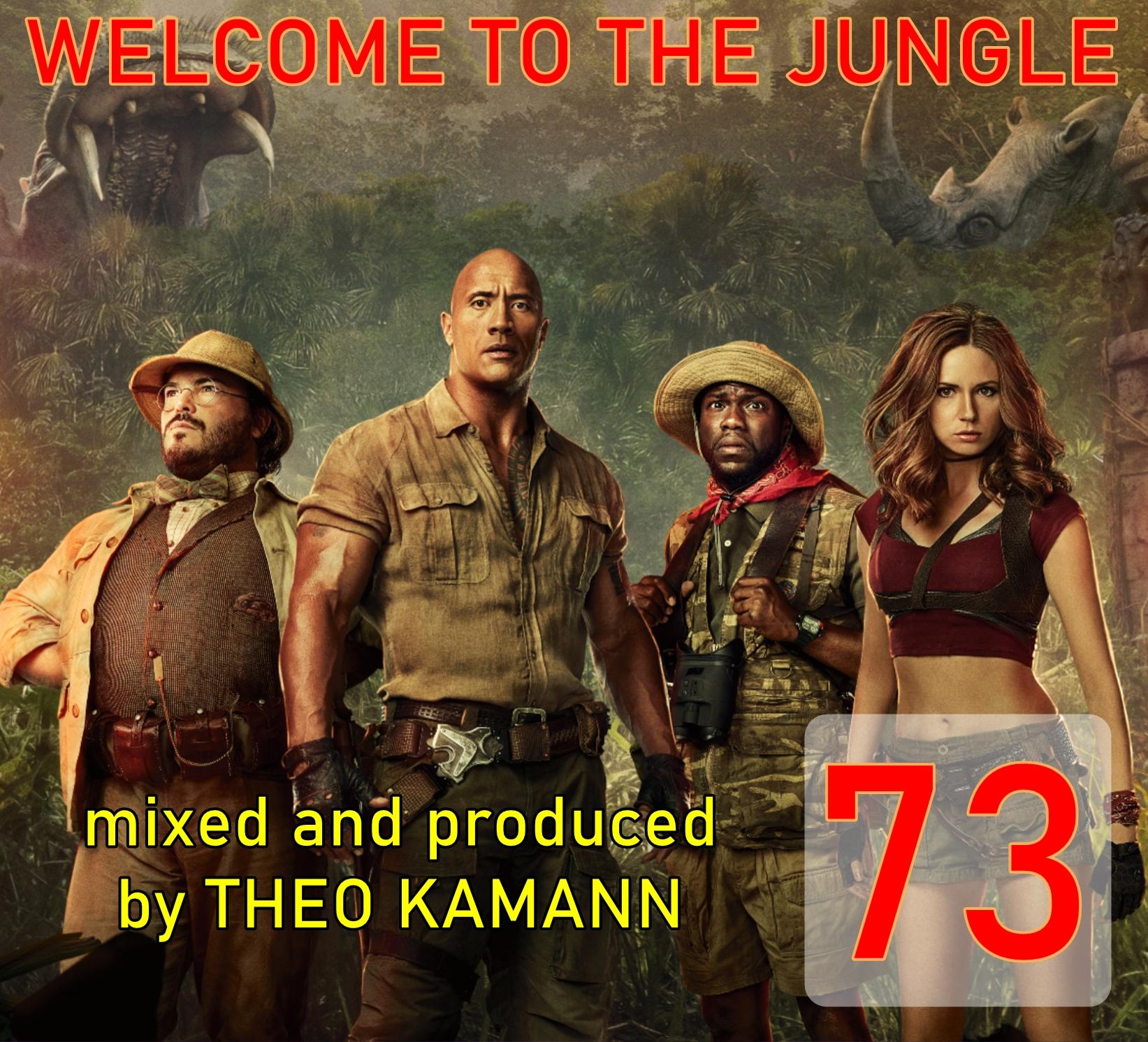 Kamannmix 73