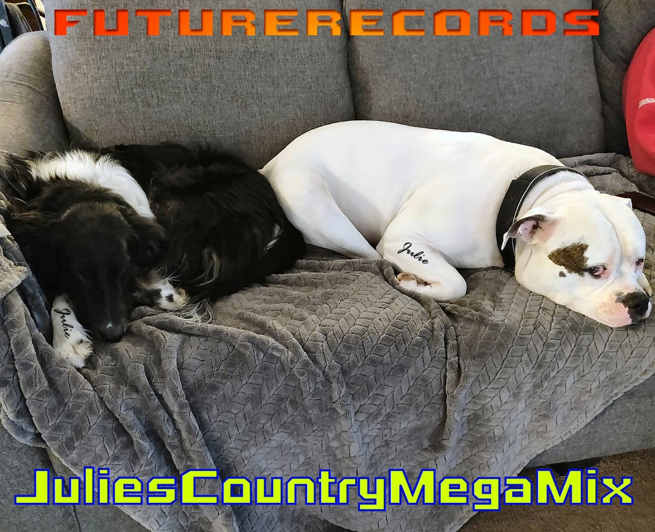 Julies Country MegaMix